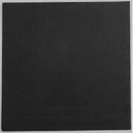 Serwetki Papierowe 2 Warstwi 25x25cm 2C Czarni (100 Sztuk)