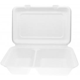 Pudełka na Burgeri 2C Trzciny Cukrowej 320x240x50mm (50 Sztuk)