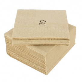 Paper Napkins Eco-Friendly 20x20cm 2C (6.000 Units)