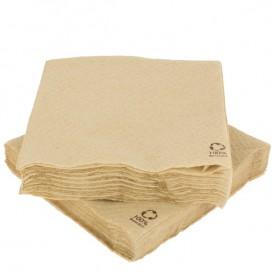 Paper Napkin Eco-Friendly 30x30cm 1 Layer (100 Units)