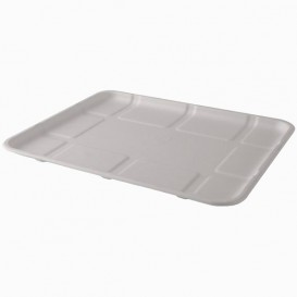 Plastic Lid for Tray Clear PET 39x29cm (50 Units)