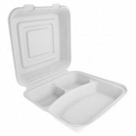 """Sugarcane Hinged Container """"Menu Box"""" White 20x20x7,5cm (50 Units)"""